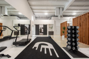 Personal training studio and chiropractic wellness