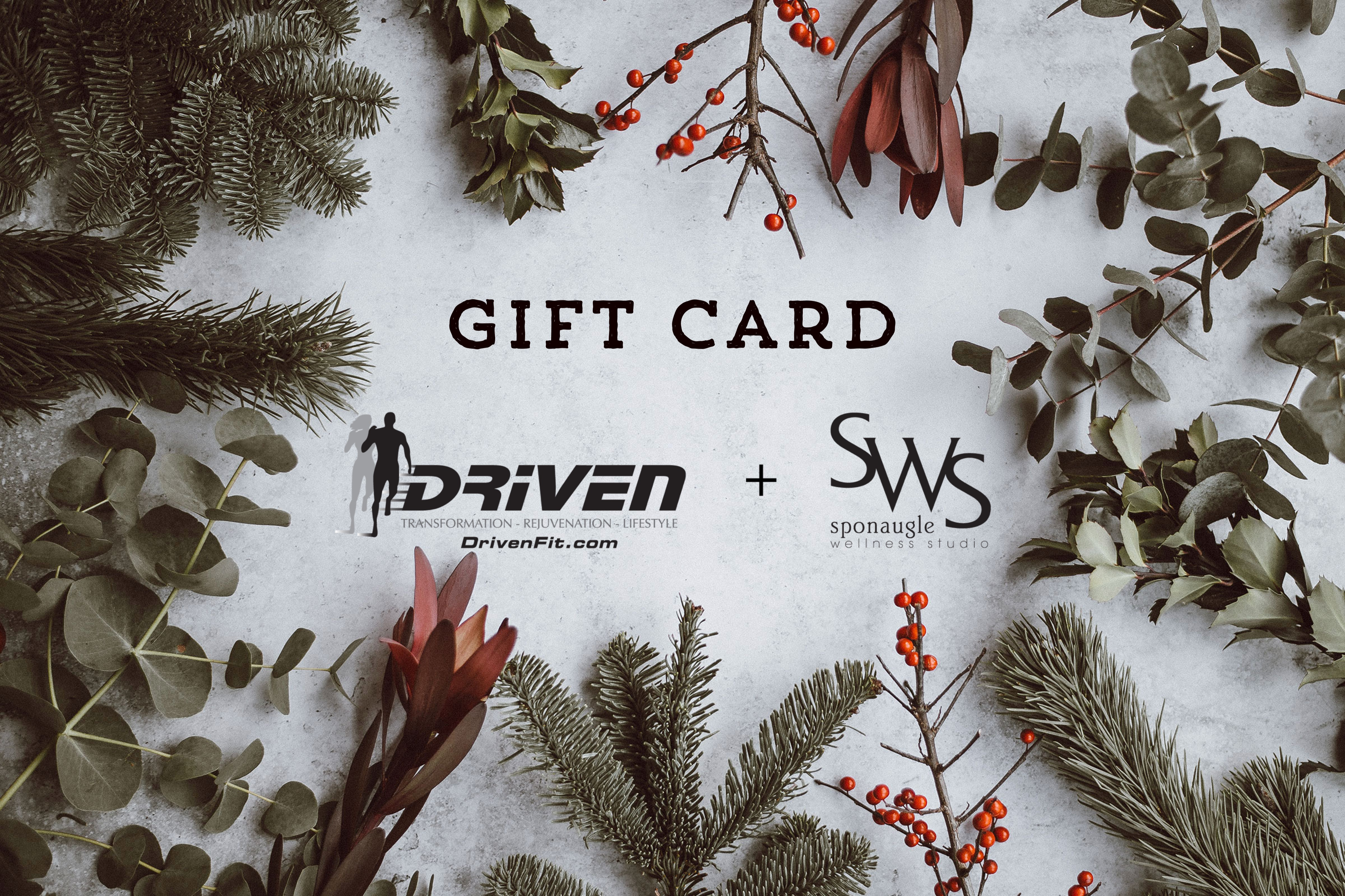 Wellness Gift Card Driven SWS South Tampa FL