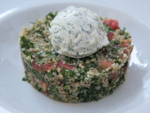 Quinoa Meatless Source of Protein DrivenFit